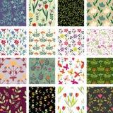 Estampados de flores Imagen de archivo libre de regalías