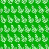 Estampados de flores inconsútiles de la belleza en fondo verde Fotografía de archivo libre de regalías