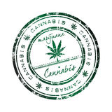 estampille de cannabis Photographie stock