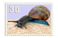 Estampille de snail mail Images stock