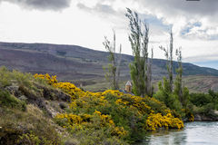 Estancia Cristina Patagonia Argentina Stock Images