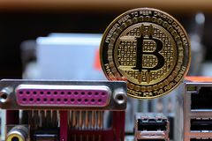 Estancia de oro del bitcoin en la placa madre del ordenador Imagen de archivo libre de regalías