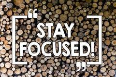 Estancia del texto de la escritura de la palabra enfocada Concepto del negocio para el vintage de madera de pensamiento inspirado fotografía de archivo