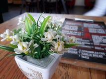 Estancia en el café Fotografía de archivo libre de regalías