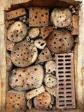 Estancia para los insectos salvajes Foto de archivo libre de regalías