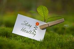 ¡Estancia sana! Foto de archivo libre de regalías
