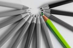 Estando para fora o lápis verde fora dos lápis cinzentos fotografia de stock royalty free