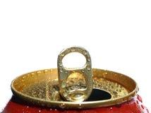 Estanho molhado do ouro Fotografia de Stock
