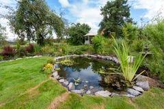 Estanque de peces diseñado hermoso del jardín con el agua-lirio en un pozo Ca imágenes de archivo libres de regalías