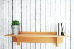 Estante con la planta y los libros Imagen de archivo libre de regalías