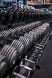Estante de la pesa de gimnasia con los pesos de plata y negros Fotos de archivo libres de regalías
