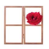 Estante de madera adornado con las flores de la rosa del rojo Imagenes de archivo