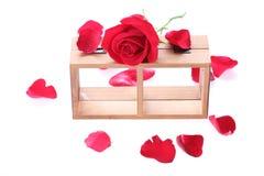 Estante de madera adornado con las flores de la rosa del rojo Imagen de archivo