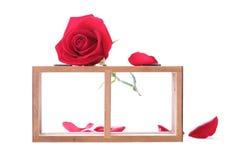 Estante de madera adornado con las flores de la rosa del rojo aisladas Foto de archivo libre de regalías