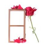 Estante de madera adornado con las flores de la rosa del rojo aisladas Fotografía de archivo libre de regalías