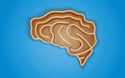 Estante de madera bajo la forma de cerebro Foto de archivo libre de regalías