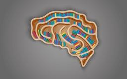 Estante de madera bajo la forma de cerebro con los libros Foto de archivo libre de regalías