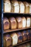 Estante de panes recientemente cocidos al horno Imágenes de archivo libres de regalías