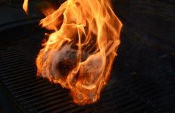 Estante del cordero engullido en llamas en una parrilla caliente fotografía de archivo libre de regalías