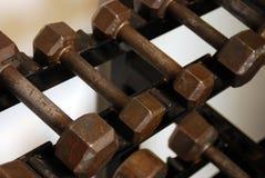 Estante del peso Imágenes de archivo libres de regalías
