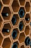 Estante del vino con las botellas Imagen de archivo libre de regalías