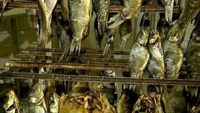 Estantes con los pescados ahumados y secados, tienda de acabado, movimiento de la cámara metrajes