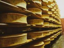 Estantes con queso confeccionado apetitoso en el sótano en una pequeña quesería imagen de archivo libre de regalías