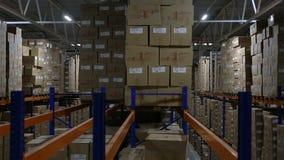 Estantes de las cajas de cartón almacen de metraje de vídeo
