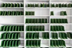 Estantes vacíos, mudanza del concepto Fotografía de archivo libre de regalías