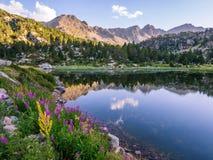 Estany abc-bok sjö i Andorra, Pyrenees berg Arkivbild