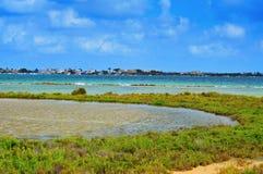 Estany Des Peix在Formentera,巴利阿里群岛,西班牙 免版税库存照片
