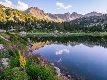 Estany Primer lake in Andorra, Pyrenees Mountains Stock Photography