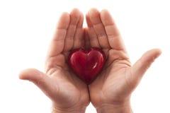 Estas mãos loving Fotos de Stock Royalty Free