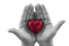 Estas mãos loving Fotografia de Stock