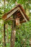 Estasi la lanterna delle case sui trampoli nella foresta pluviale del santuario di Khao Sok, Thail Fotografia Stock Libera da Diritti