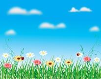 Estate astratta della sorgente del fiore dell'illustrazione del fiore Immagini Stock Libere da Diritti