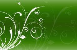 Estate astratta della sorgente di vettore dell'illustrazione del fiore Fotografia Stock