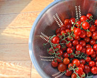 Estate Cherry Tomatoes Fotografie Stock