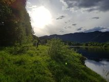 Estate dal fiume Fotografie Stock Libere da Diritti