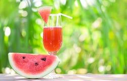 Estate del succo dell'anguria con la frutta dell'anguria del pezzo su vetro sul fondo di verde della natura fotografie stock libere da diritti