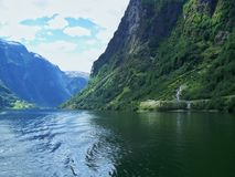 Estate della Norvegia della natura Acqua, fiordo della foresta un giorno soleggiato fotografia stock