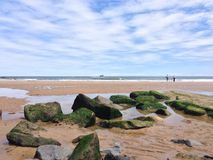 estate della spiaggia del tynemouth immagini stock libere da diritti