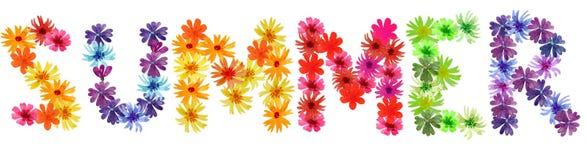 Estate delle lettere dai fiori di estate W royalty illustrazione gratis