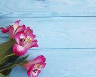 Estate di legno blu di compleanno del greenon del headflower del petalo di Alstroemeria Fotografia Stock
