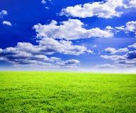 estate di paesaggio Fotografia Stock