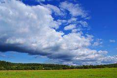 estate di paesaggio di f Immagine Stock