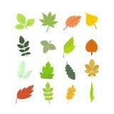 Estate e Autumn Leaves Set Vettore Immagini Stock