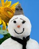 Estate ed inverno Fotografie Stock Libere da Diritti