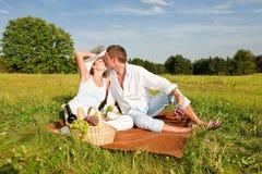 estate felice di picnic del prato delle coppie Immagini Stock