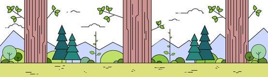 Estate Forest Landscape Thin Line degli alberi Immagine Stock